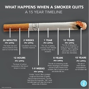 why people shouldnt smoke Why you shouldn't quit smoking by sifu  what about those people who can just smoke on weekends  as the director of flowing zen and a board member for the.